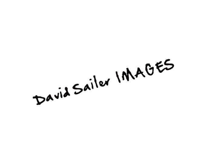 David-Sailer